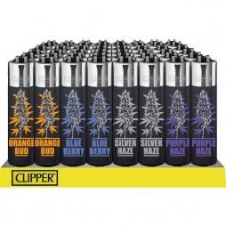 Clipper 'Strains'