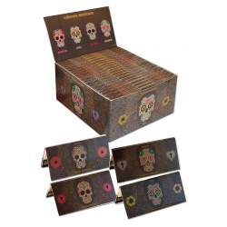 Snail Skulls King Size Slim + Filtres Box