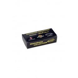 Snail Seedsbank King Size Slim + Filters Box