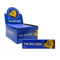 Bulldog blau King Size Box